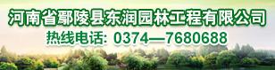 河南省鄢陵县东润园林工程有限公司