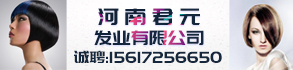 河南君元发业有限公司