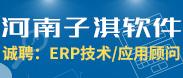 河南子淇软件服务有限公司-许昌企业招聘